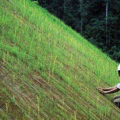 Fondo Quellaveco despejará dudas sobre el VIII Concurso de Proyectos para el Desarrollo Sostenible desde mañana