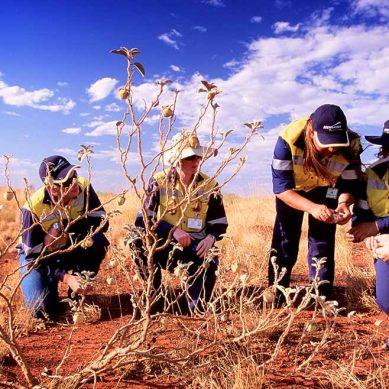 En el XII CONAMIN se debatirá el concepto de minería responsable