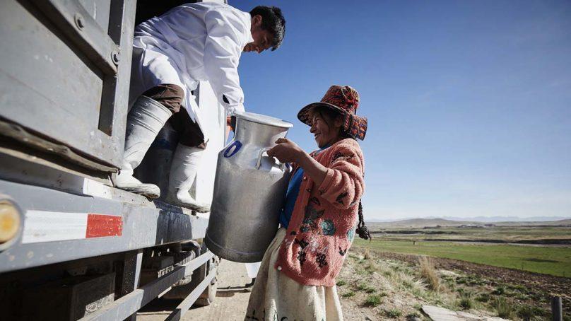Planta de lácteos financiada por Minera Antapaccay generó ventas por US$2 millones en 2017