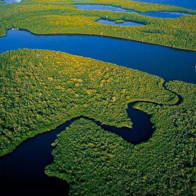 Iquitos: APN planea tener funcionando nuevo puerto de S/200 millones en 2024