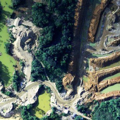 Científicos de EEUU sostienen que deforestación por minería ilegal en Madre de Dios es peor de lo que creíamos