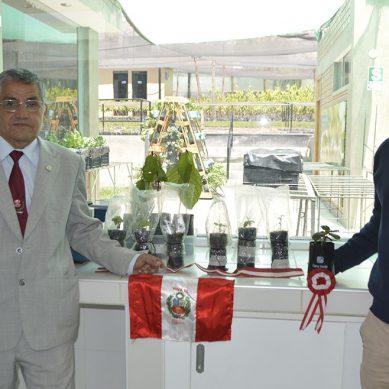 Cerro Verde impulsa recuperación de especies tradicionales de flora en Arequipa