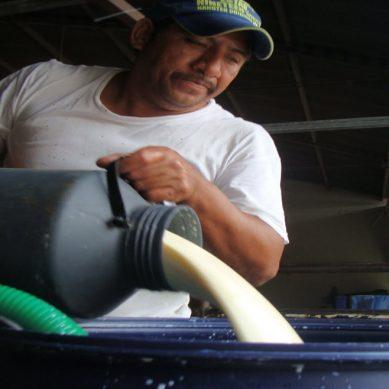 Miles y miles de litros se pierden en Venezuela por falta de electricidad