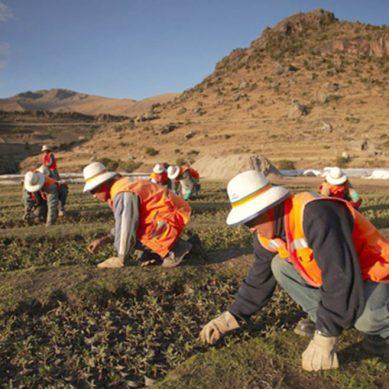 MEM quintuplica presupuesto para remediar pasivos ambientales mineros y petroleros