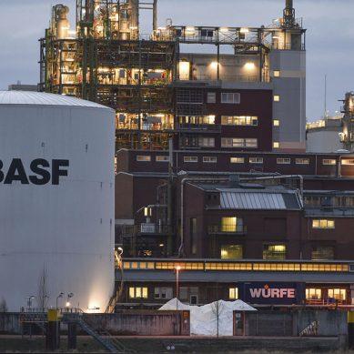 Nueva estrategia de proveedora de químicos BASF pasa por la digitalización y la descarbonización