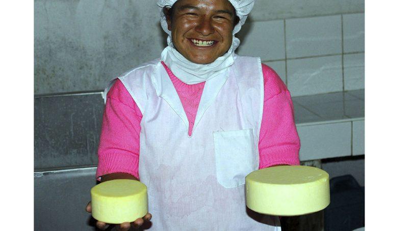Programa social de Gold Fields mejora ingresos en 21 comunidades de Hualgayoc