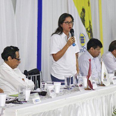 MEM instala comisión sectorial para el desarrollo energético sostenible de Loreto