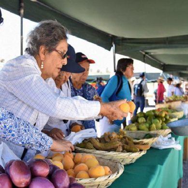 """""""Las Riquezas del Baúl"""": Anglo American y su promoción de la agricultura agroecológica"""
