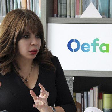 Presidenta del OEFA: «En el 2018 aumentó el número de casos tramitados por el Tribunal de Fiscalización Ambiental»