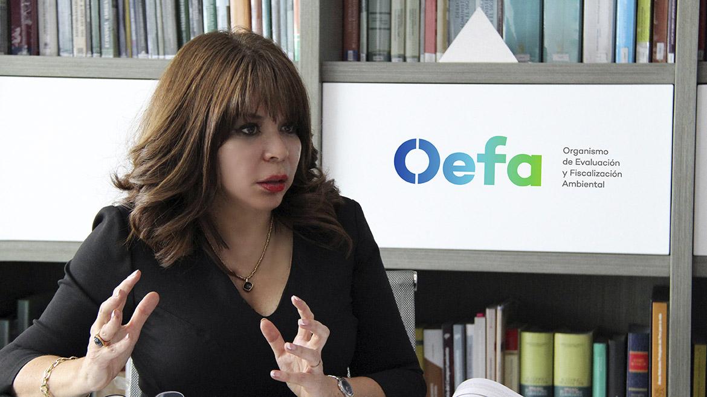 """Presidenta del OEFA: """"En el 2018 aumentó el número de casos tramitados por el Tribunal de Fiscalización Ambiental»"""