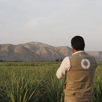 El OEFA descarta derrames de Southern Copper Corporation en Moquegua