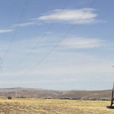Red Eléctrica Internacional espera aumentar en 5% su participación de mercado este año