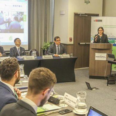 """Viceministra de Electricidad: """"Evaluamos alternativas tecnológicas para el uso de vehículos eléctricos"""""""