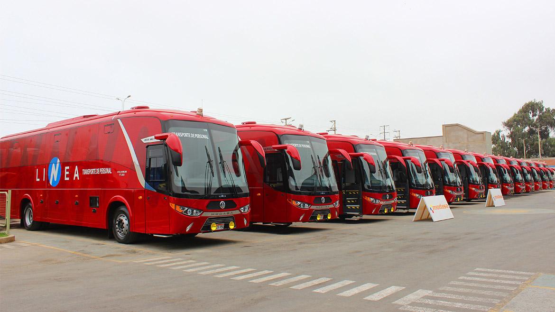 Ventas de buses para el sector minero de Modasa aumentaron en 50%