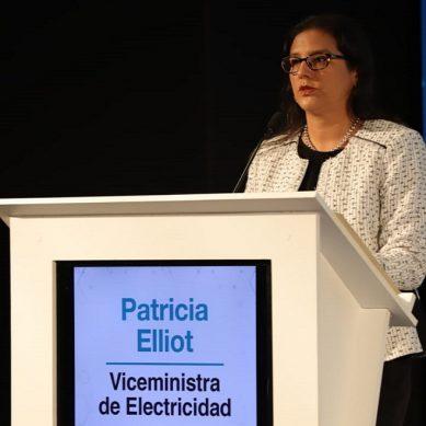 Patricia Elliot: «Perú tiene una matriz energética más limpia que el promedio mundial»