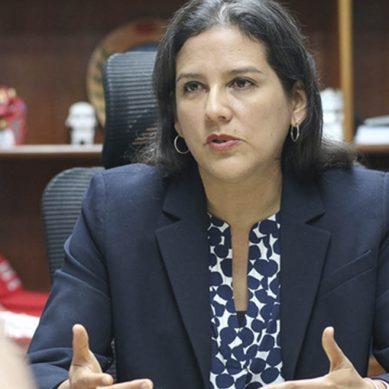 Viceministra de Electricidad: «Propondremos medidas para garantizar suministro eléctrico para los próximos años»