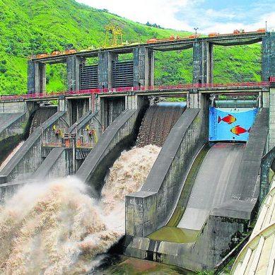 San Martín: Titánica hidroeléctrica de US$ 617 millones usará las aguas del río Biavo