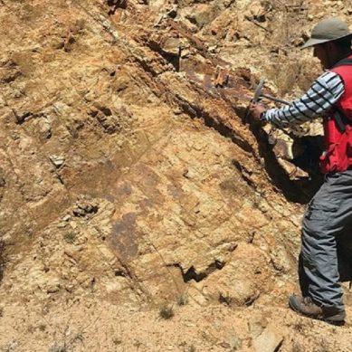 Tacna: Perforarán proyecto de 13.5% Cu y 23.6 g/t Au en 2020