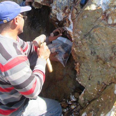 Palamina afirma haber hallado 74,5 g/t de oro en Puno