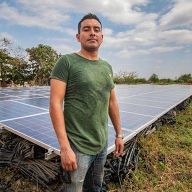 Una planta solar para el riego y un macetero que genera electricidad con fotosíntesis: curiosidades del Sun World 2019