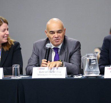 Minam: necesitamos hablar del precio a las emisiones de carbono