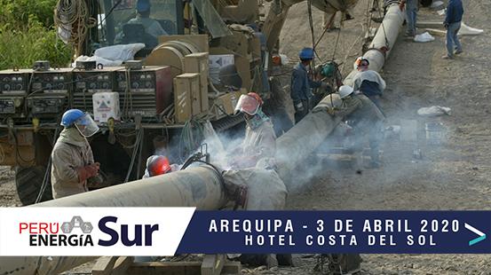 Ortiz: «Licitar el Gasoducto Sur es un asunto de decisión política, nada más»